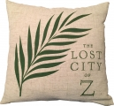 <h5>The Lost City of Z pillow</h5>